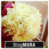 sumebanner_flower